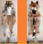 Genuine-Native-American-Navajo-Indian-Headdress-Full-Coyote-Medicine-Man-Shaman