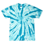 Tie-Dye-Tonal-T-Shirts-Adult-Sizes-S-5XL-Unisex-100-Cotton-Colortone-Gildan thumbnail 4