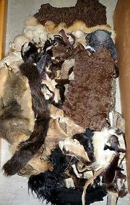 Fell Pelz Stücke Echtfell Nerz Fuchs Opossum Mink Fur Zobel Pelzreste Basteln SorgfäLtige FäRbeprozesse Bekleidungspakete Jacken, Mäntel & Westen