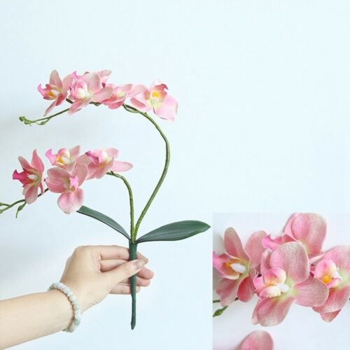 Latex Flower Phalaenopsis Orchid  Flowers Artificial Silicone Plant Centerpiece