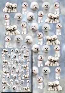 Bichon-Frise-Dog-Gift-Wrapping-Paper-By-Starprint-1-sheet-plus-matching-card