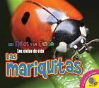 Las Mariquitas (Ladybugs) by Aaron Carr (Hardback, 2016)
