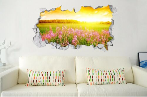 3D Sun field 623 Wall Murals Stickers Decal breakthrough AJ WALLPAPER AU Lemon