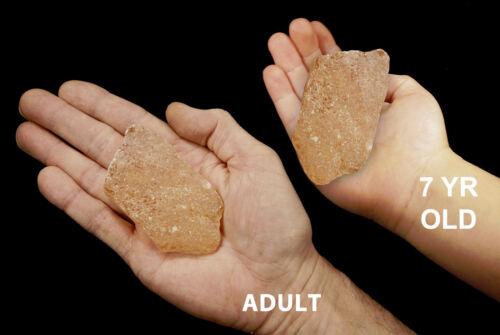 "Copal Amber 3/"" Mineral Specimen Solar Plexus Chakra Healing Crystas and Stones"