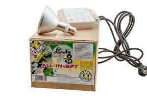 Kit de démarrage aux halogénures métalliques - HQI Desert Lighting Watt: 70w