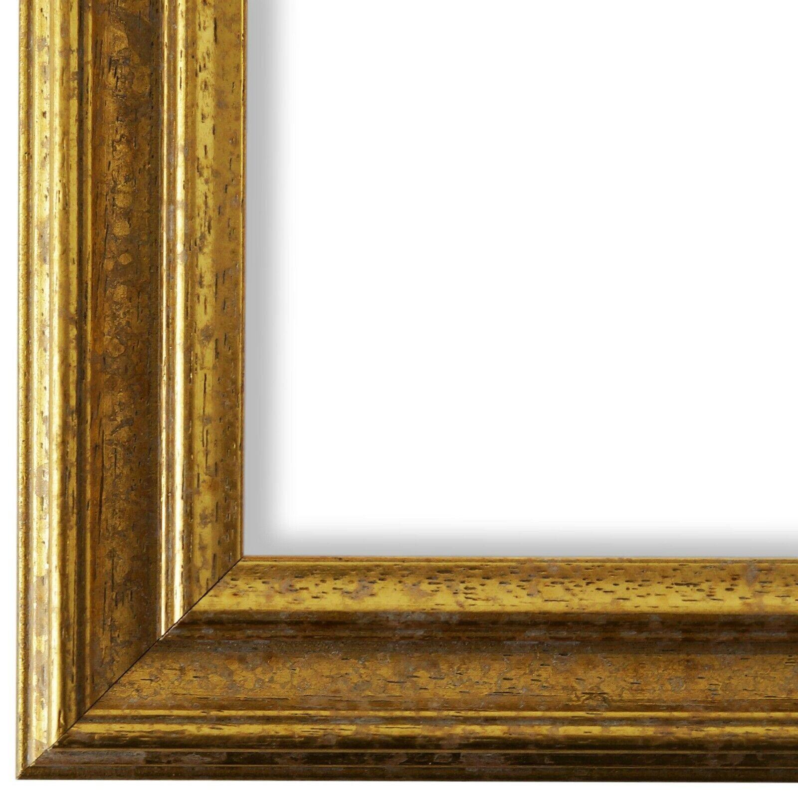 Bilderrahmen Forli Gold - 80x80 80x90 80x100 80x120 90x90 90x100 100x100