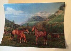 Vintage-1960s-70s-TOPPAN-Japan-Lenticular-3D-Postcard-Horses