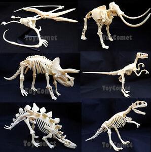 Stegosaurus Dino Dinosaur Skeleton Display Figure 4D 3D Puzzle Model Kit Toy