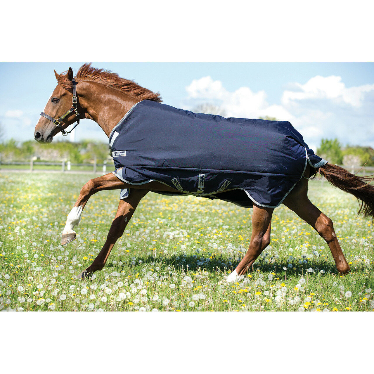 Rambo Medium Original Turnout Blanket with Leg Arches (200g) - Navy - Diff Sizes