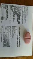 50 Dog Wormer Pills- Worm Free- All Wormer , Treats 55 Per Pill