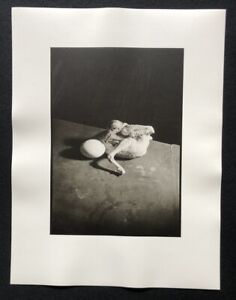Wols-oeuf-fonte-Surprise-Parigi-1939-fotografia-da-eredita-1981