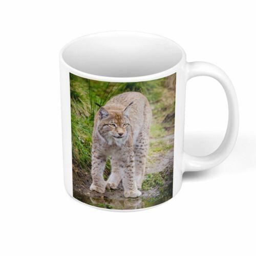 Mug Céramique Grand Lynx Animal Sauvage Photo Nature