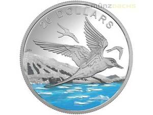 20-Dollar-scintillant-North-Arctique-ETOILE-Sterne-CANADA-1-once-2017