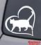 CAT-HEART-Vinyl-Decal-Sticker-Car-Window-Wall-Bumper-Animal-Adopt-Paw-Love-Pet miniature 1