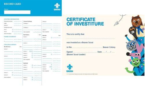 Beaver scout investiture certificat version 2015 pkt de 10 disques ou cartes neuf