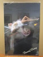 Vintage 1985 Beauty Rising Original Hot Girl Classic Car Poster 12028