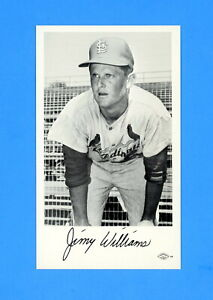 1966-ST-LOUIS-CARDINALS-TEAM-ISSUED-POSTCARD-JIMMY-WILLIAMS-NM-MT