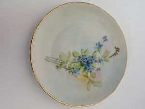 Hutschenreuther-SELB-Bavaria-Plate-Hand-Painted-Flowered-Gold-Rimmed