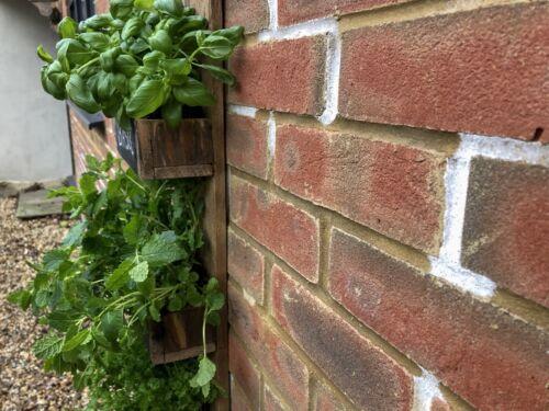 Rustique palette bois jardin de fines herbes pot \ organisateur de stockage étagère