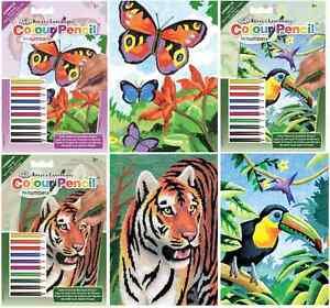 Set-3-x-A5-kits-Couleur-Crayon-Par-amp-nombre-TOUCAN-papillon-amp-tiger-cpnmin102-3-4
