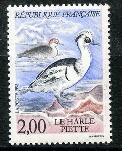 STAMP-TIMBRE-FRANCE-NEUF-N-2785-FAUNE-CANARD-LE-HARLE-PIETTE