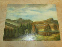 Vintage Original Oil Painting On Board , Signed By C. W. Skewes - 1988