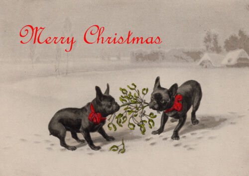FRENCH BULLDOG TWO DOGS WITH MISTLETOE SINGLE DOG PRINT GREETING CHRISTMAS CARD