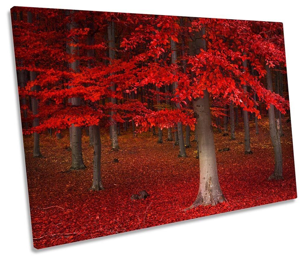 rot Forest Landscape Bild SINGLE CANVAS Wand Kunst Drucken