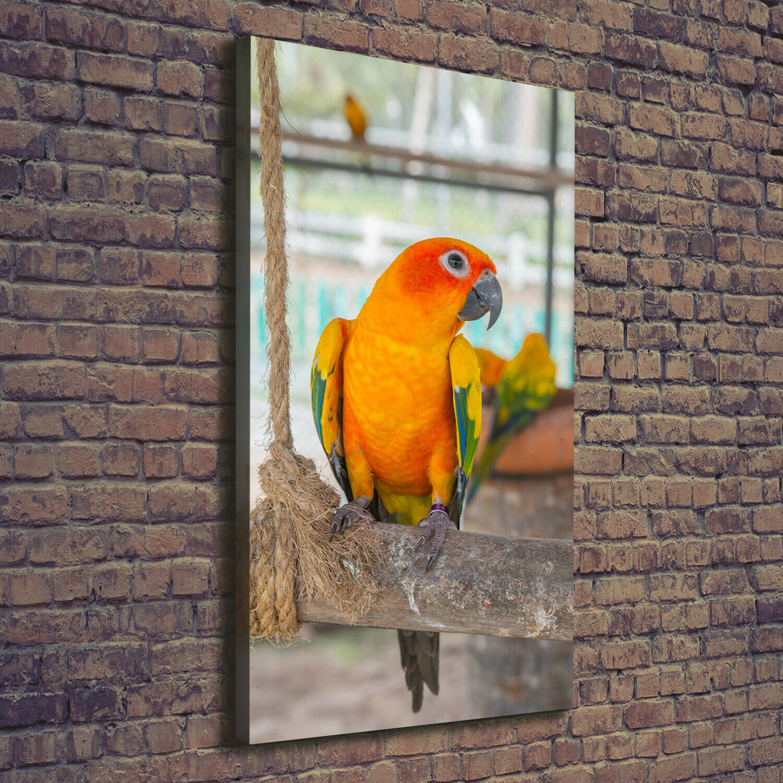 Leinwand-Bild Kunstdruck Hochformat 70x140 Bilder Papagei