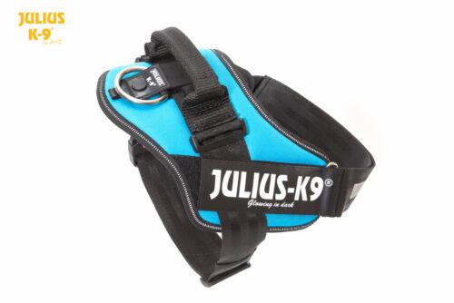 All Sizes AQUAMARINE Julius-K9 IDC Powerharness
