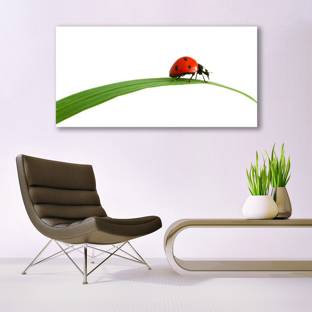 Print on Glass Wall art 140x70 Picture Image Ladybug Ladybug Ladybug Floral c84399