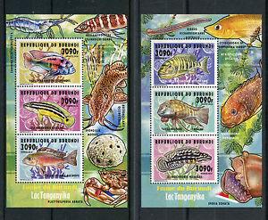 Burundi-2014-neuf-sans-charniere-poissons-du-lac-Tanganyika-2-x-Deluxe-3V-m-s-ii-poissons-poissons