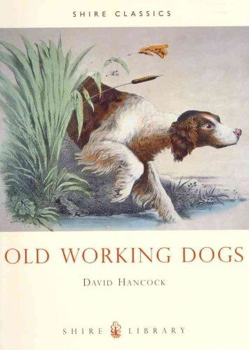 1 of 1 - Old Working Dogs by David Hancock 9780747803768 (Paperback, 1998)