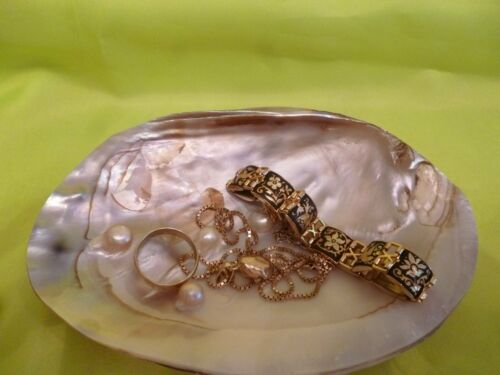 Schmuckschale eine echte Perlmutt Muschel mit eingewachsenen Perlen