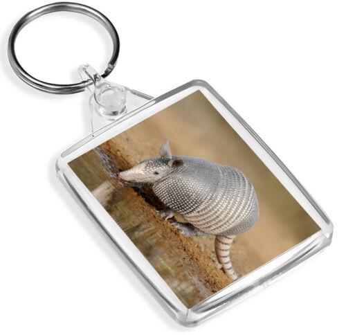 Texan Armadillo Desert Keyring Zoology Animals Fun Keyring Gift #15712