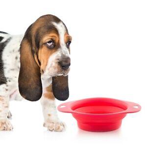 Gamelle en silicone pliable pour animaux domestiques chien et chat