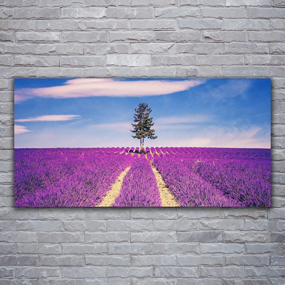 Photo sur toile Tableau Image Impression 120x60 Paysage Arbre Prairie