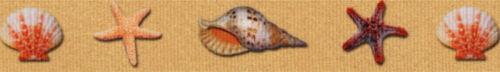 Country Brook Design® 7//8 Inch Seashells Grosgrain Ribbon