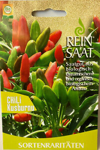 Chili Kusburnu - Saatgut - Samen  - Bio  - aus biologischem Anbau - Reinsaat