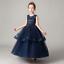Flower-Girl-Dress-Princess-Formal-Graduation-Bridesmaid-Size-4-14-ZG9 thumbnail 1