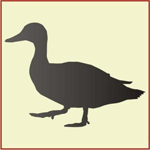 Duck Stencil | Free Stencil Gallery  |Duck Face Stencil
