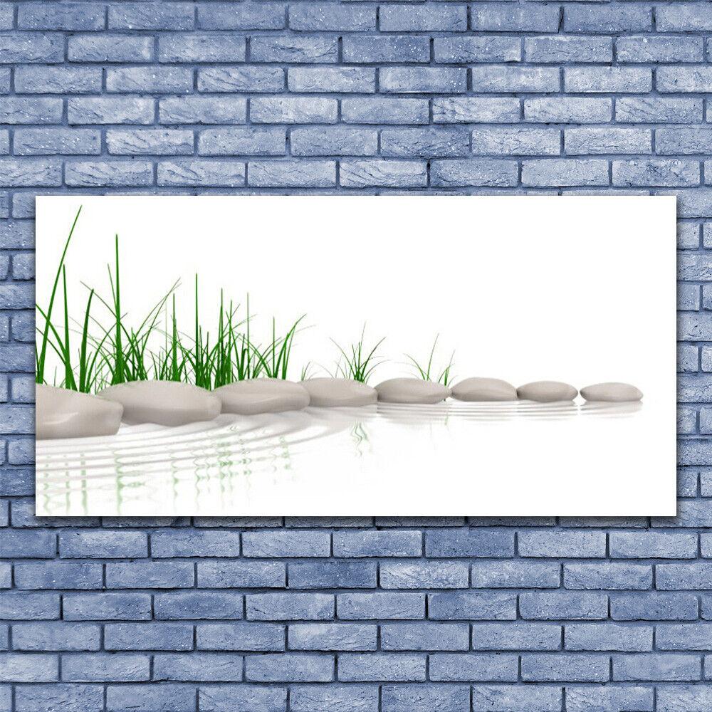 Glas Drucken Wand Kunst 140x70 Image Bild Stones Grass Kunst