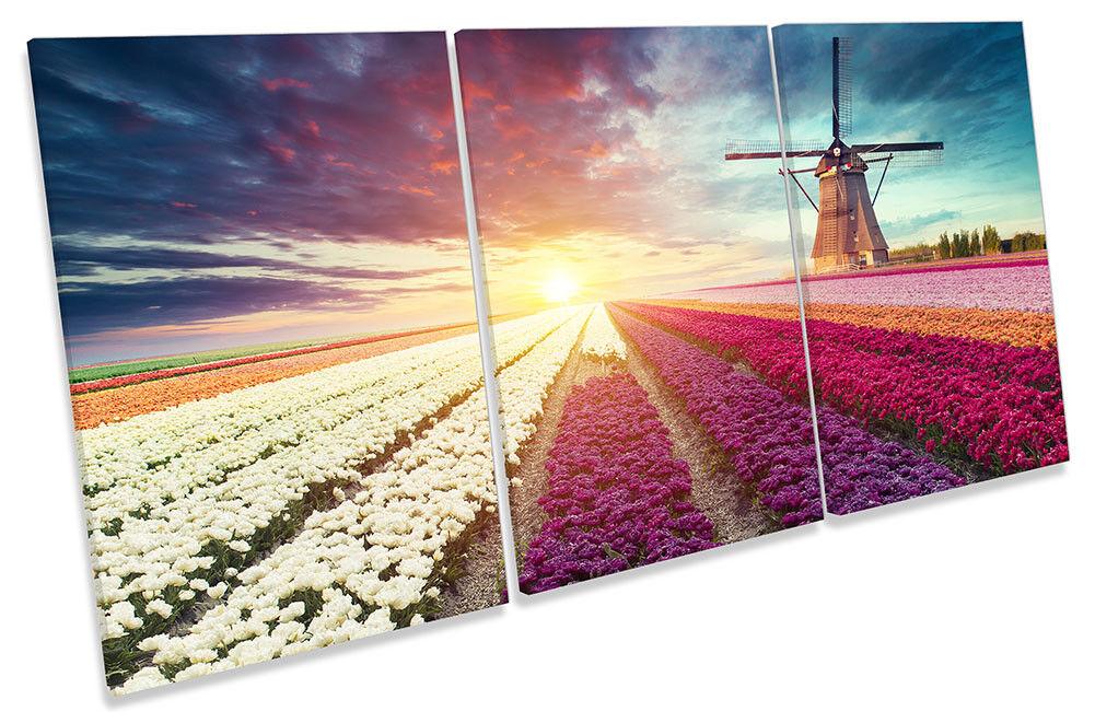 Windmill Sunset Floral Field Framed CANVAS PRINT TREBLE Wall Wall Wall Art 9f9a3b