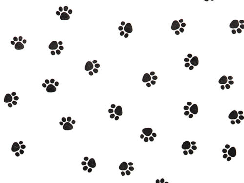 10 Large Sheets Little Black PAW PRINTS Tissue Paper on White # 271 :¦: