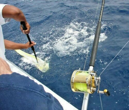 Saltwater Chugger Fishing Lure Trolling Tuna Wahoo Mahi Dorado Blue Water Candy
