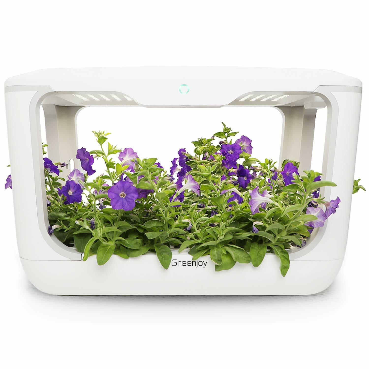 Greenjoy Indoor Herb Garden Starter Kit, Hydroponics Growing System, Plant Germi 1