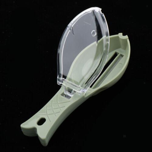 Scaler Scraper Remover Küchenwerkzeug Für Schnelleres Und