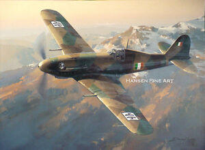 c98fde7139 Image is loading Fiat-G-55-Centauro-Limited-Edition-Aviation-Painting-