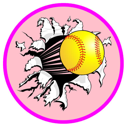 Ripping Softball, 1 Reward Size Vinyl Decal - Set of 40
