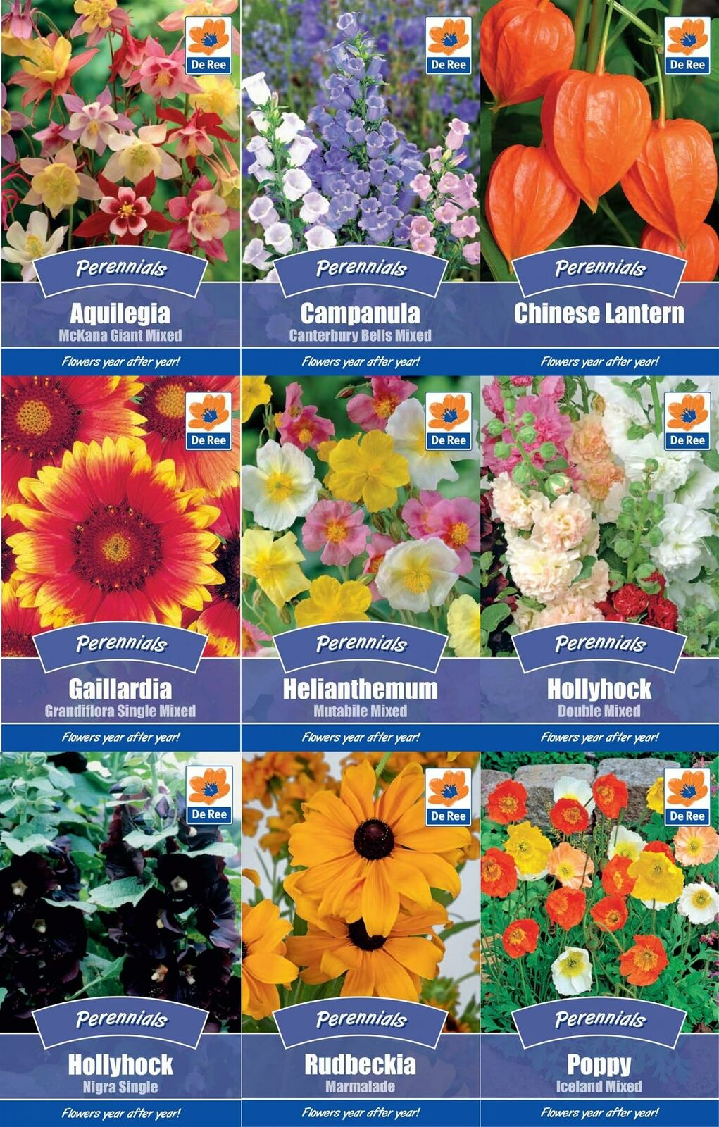 Colourful Perennial Flower Seeds Grow Your Own Hollyhock Poppy Polyanthus